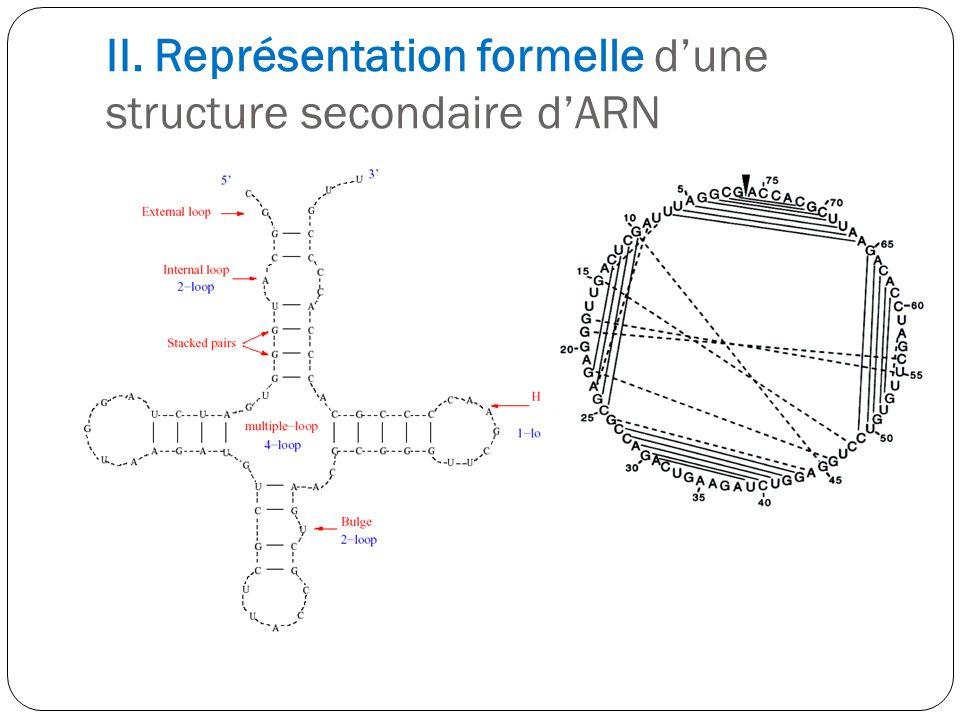 II. Représentation formelle dune structure secondaire dARN