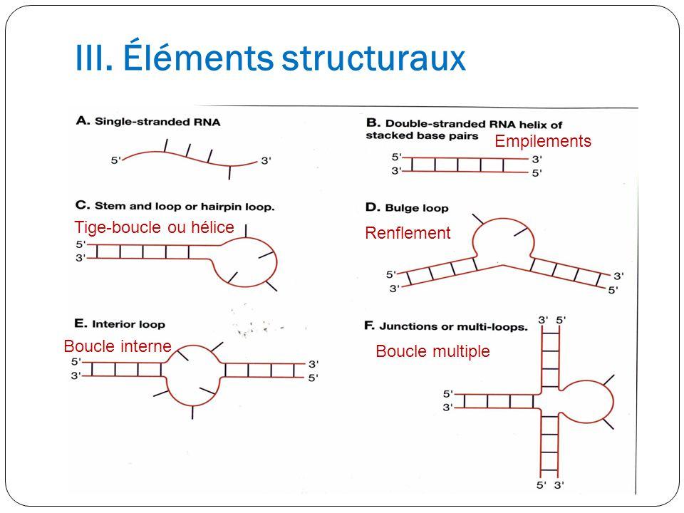 III. Éléments structuraux Tige-boucle ou hélice Boucle interne Empilements Renflement Boucle multiple