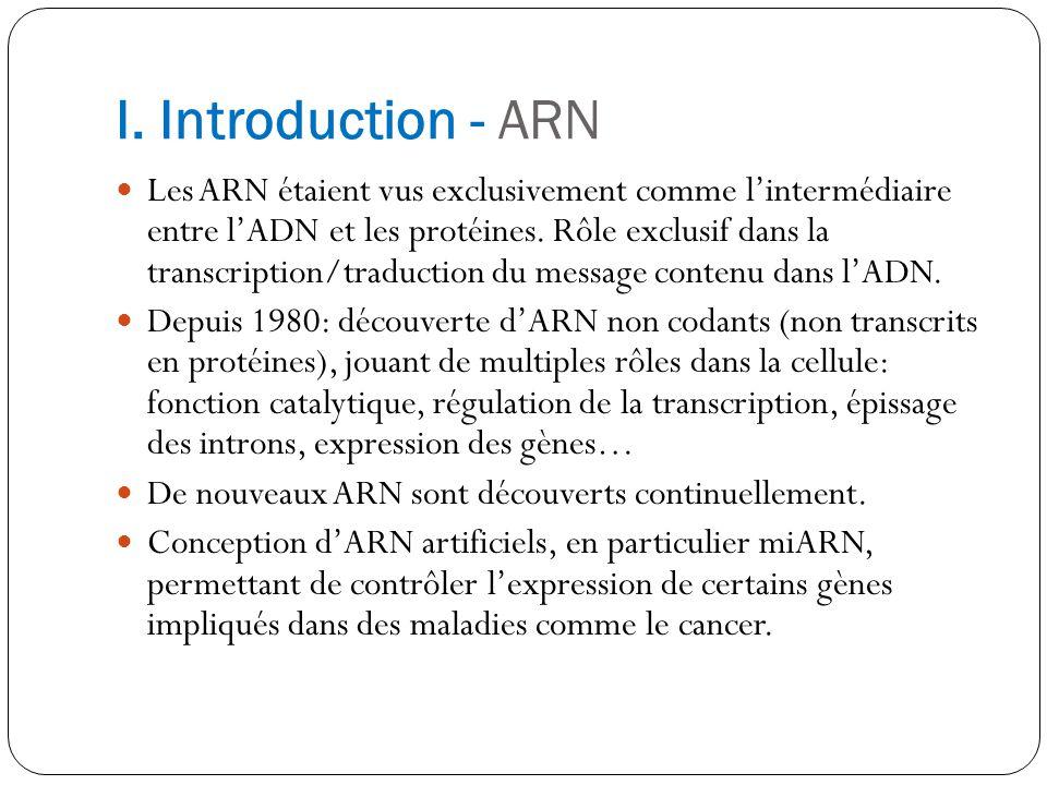 I. Introduction - ARN Les ARN étaient vus exclusivement comme lintermédiaire entre lADN et les protéines. Rôle exclusif dans la transcription/traducti