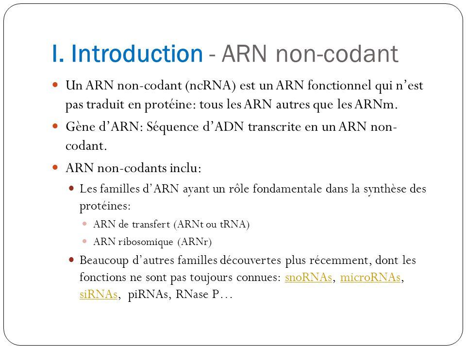I. Introduction - ARN non-codant Un ARN non-codant (ncRNA) est un ARN fonctionnel qui nest pas traduit en protéine: tous les ARN autres que les ARNm.