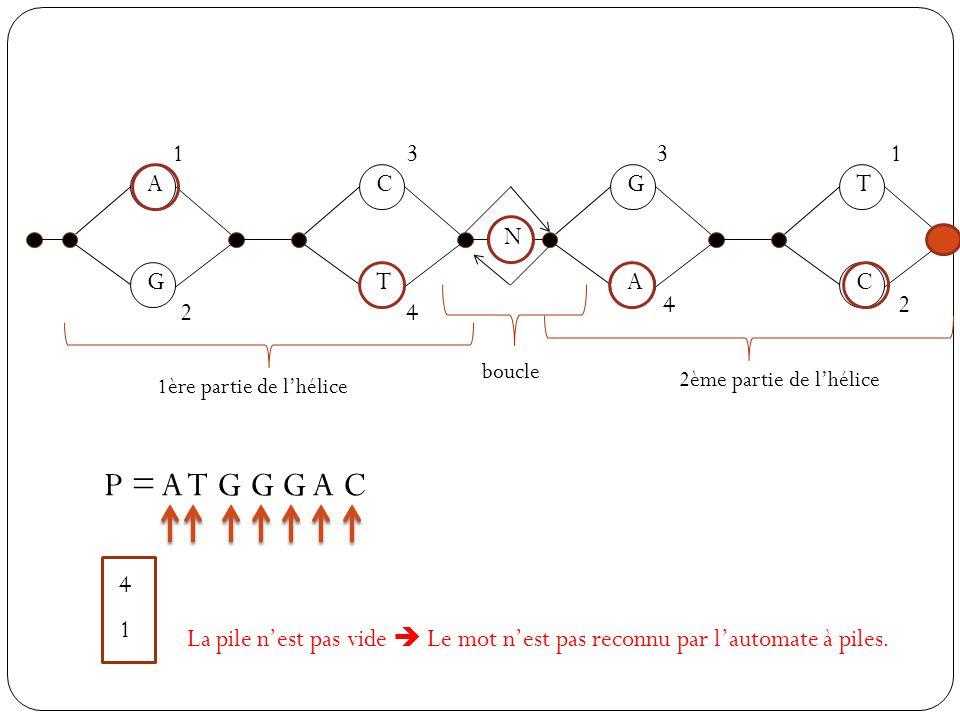 A G C T N G A T C 1 2 3 4 31 42 1ère partie de lhélice 2ème partie de lhélice boucle P = A T G G G A C 1 4 La pile nest pas vide Le mot nest pas recon