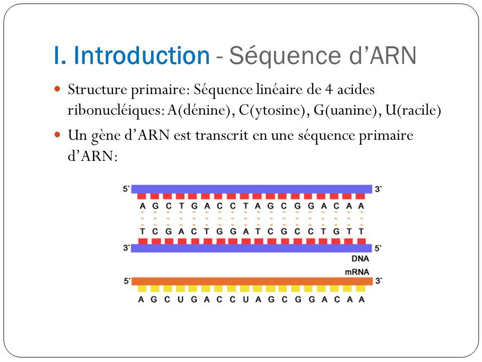 I. Introduction - Séquence dARN Structure primaire: Séquence linéaire de 4 acides ribonucléiques: A(dénine), C(ytosine), G(uanine), U(racile) Un gène