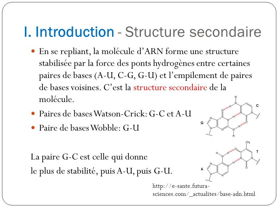 I. Introduction - Structure secondaire En se repliant, la molécule dARN forme une structure stabilisée par la force des ponts hydrogènes entre certain