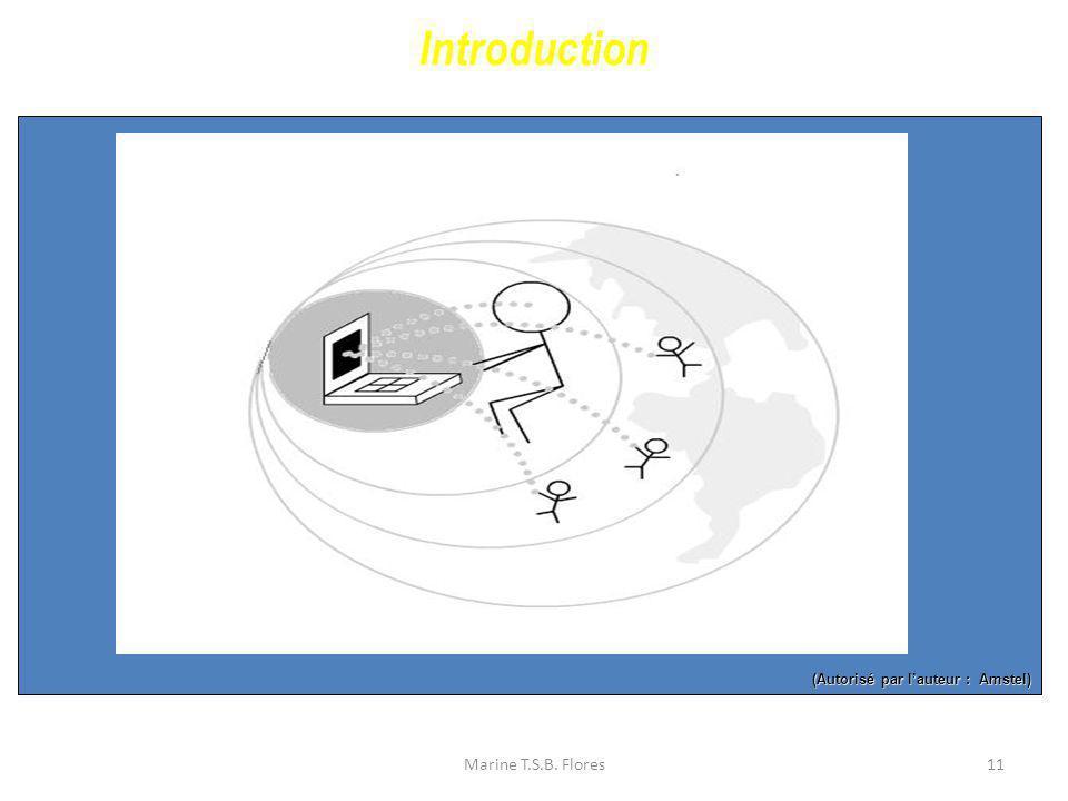 Marine T.S.B. Flores11 (Autorisé par lauteur : Amstel) Introduction