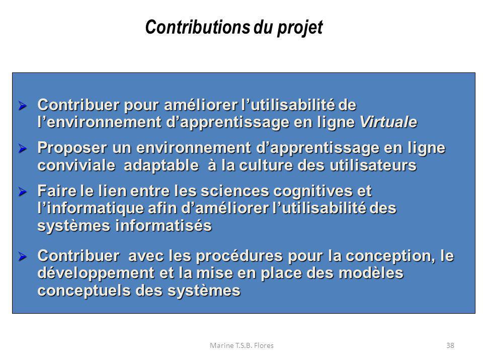 Marine T.S.B. Flores38 Contribuer pour améliorer lutilisabilité de lenvironnement dapprentissage en ligne Virtuale Contribuer pour améliorer lutilisab