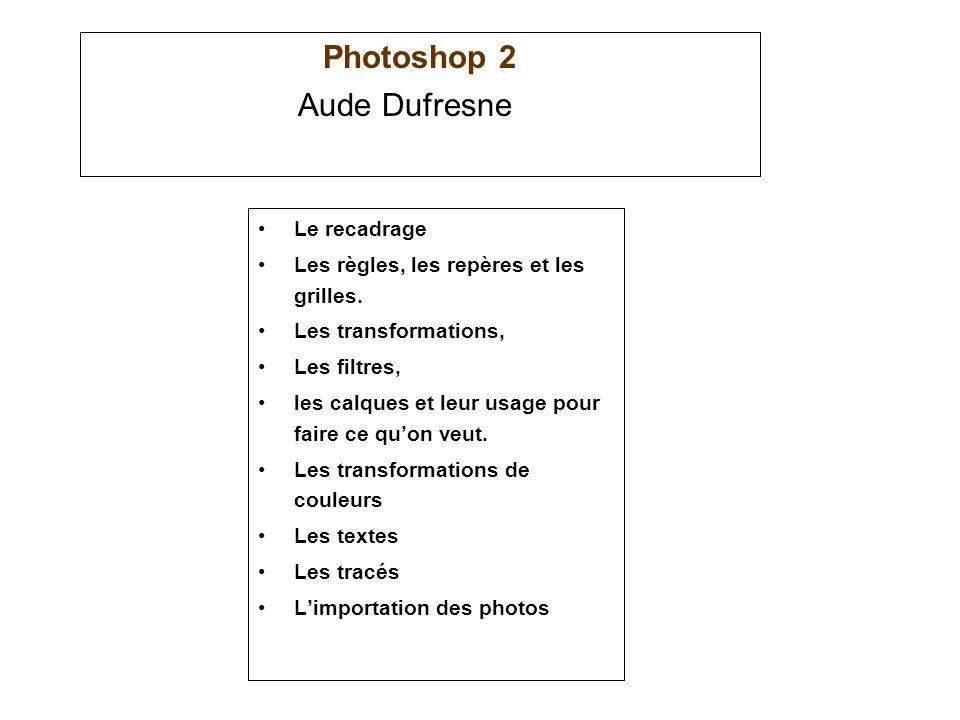 Photoshop 2 Le recadrage Les règles, les repères et les grilles. Les transformations, Les filtres, les calques et leur usage pour faire ce quon veut.
