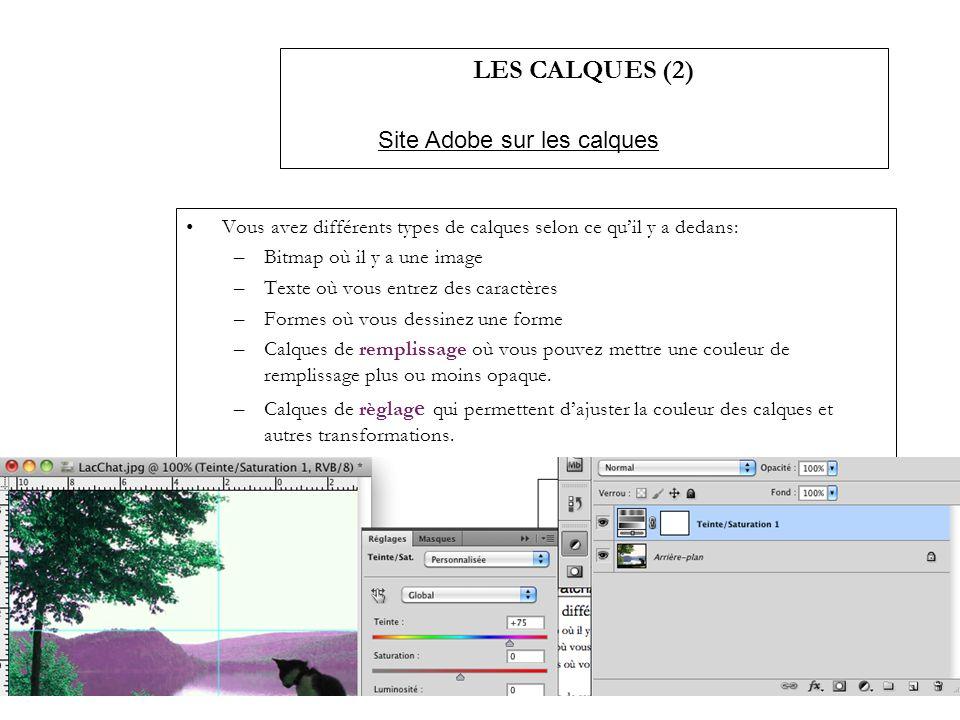 LES CALQUES (2) Vous avez différents types de calques selon ce quil y a dedans: –Bitmap où il y a une image –Texte où vous entrez des caractères –Form