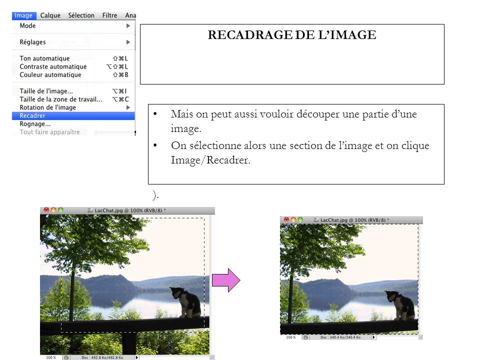 RECADRAGE DE LIMAGE Mais on peut aussi vouloir découper une partie dune image. On sélectionne alors une section de limage et on clique Image/Recadrer.