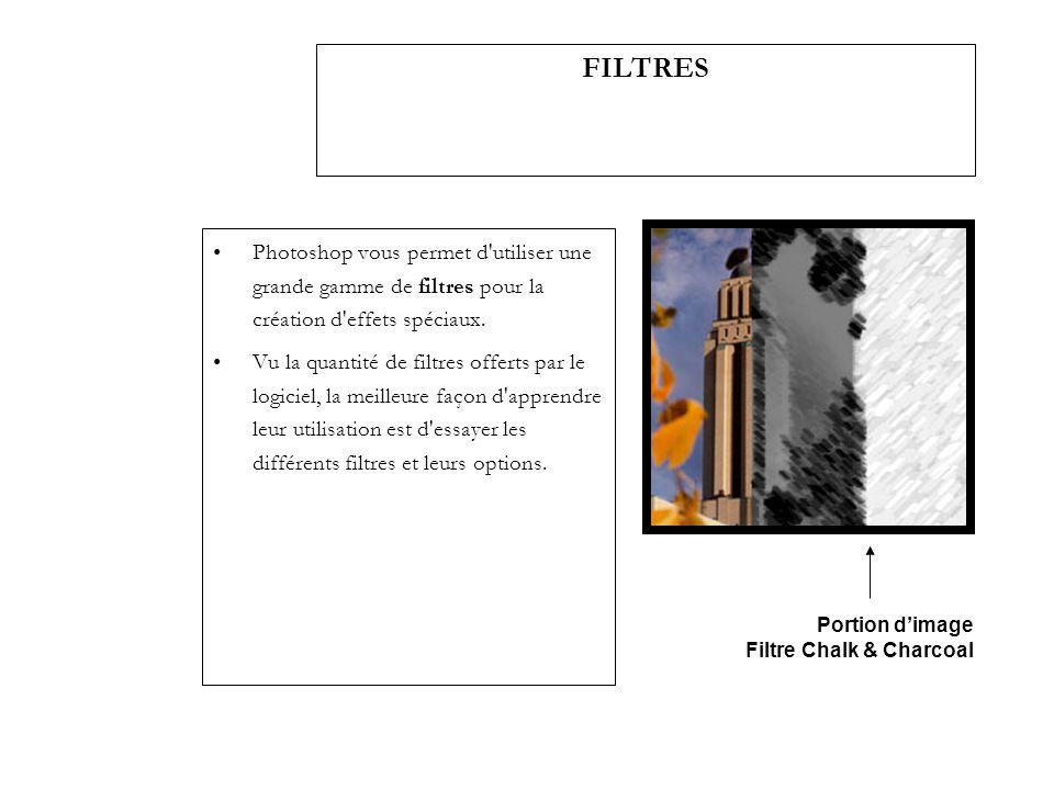 Photoshop vous permet d'utiliser une grande gamme de filtres pour la création d'effets spéciaux. Vu la quantité de filtres offerts par le logiciel, la