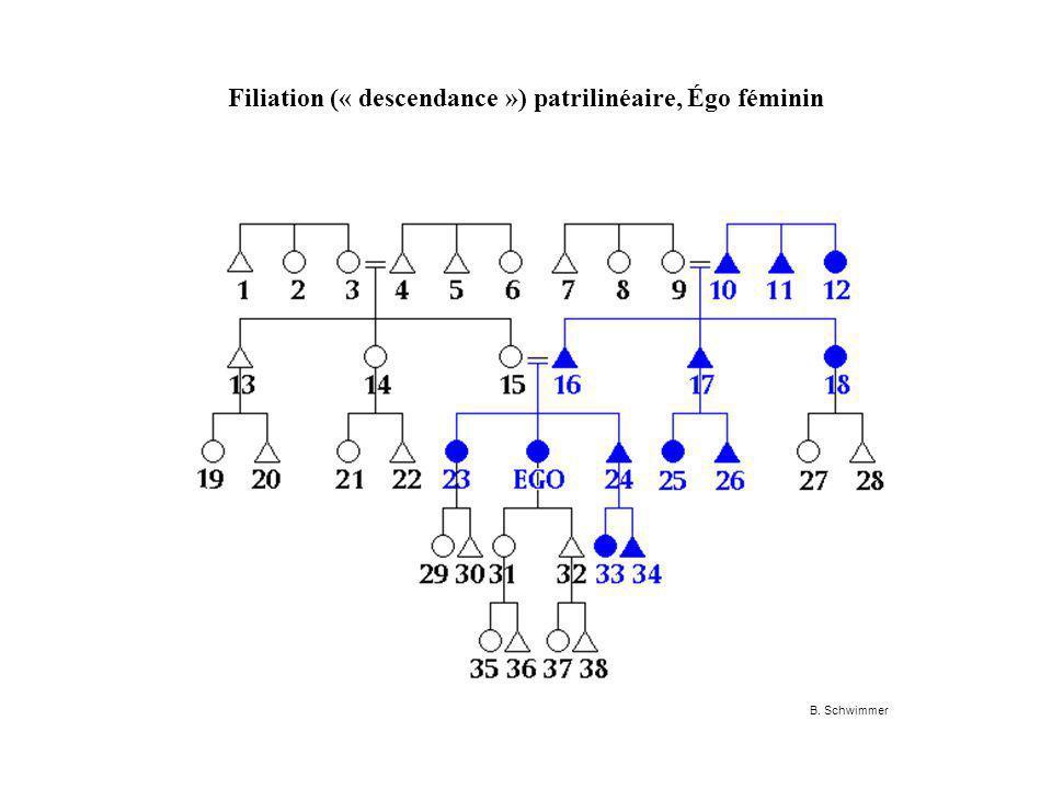 Filiation (« descendance ») patrilinéaire, Égo féminin B. Schwimmer