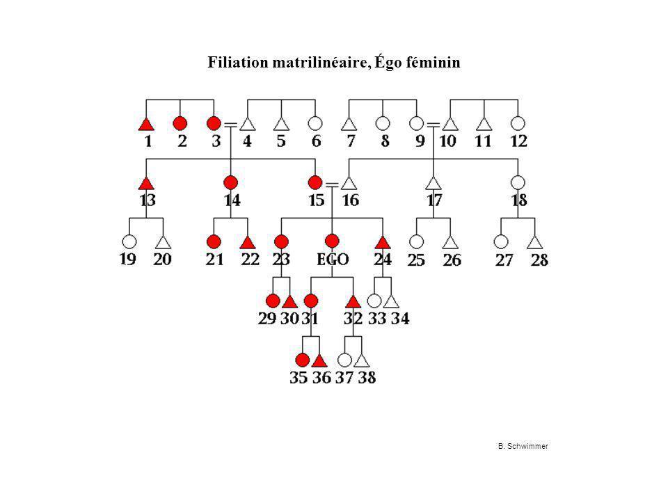 Filiation matrilinéaire, Égo féminin B. Schwimmer