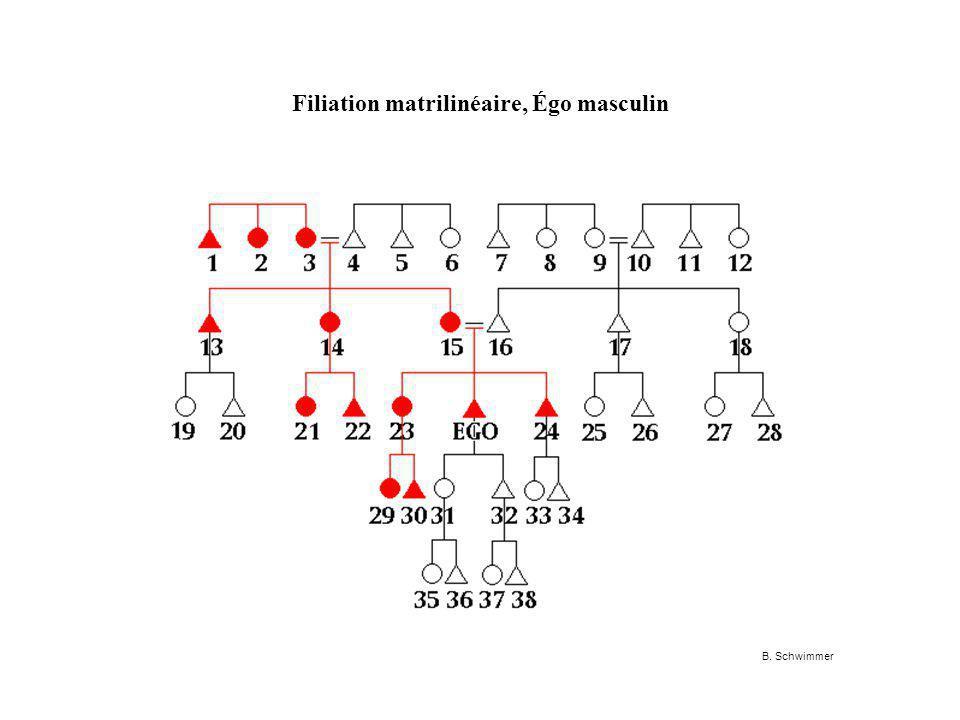 Filiation matrilinéaire, Égo masculin B. Schwimmer