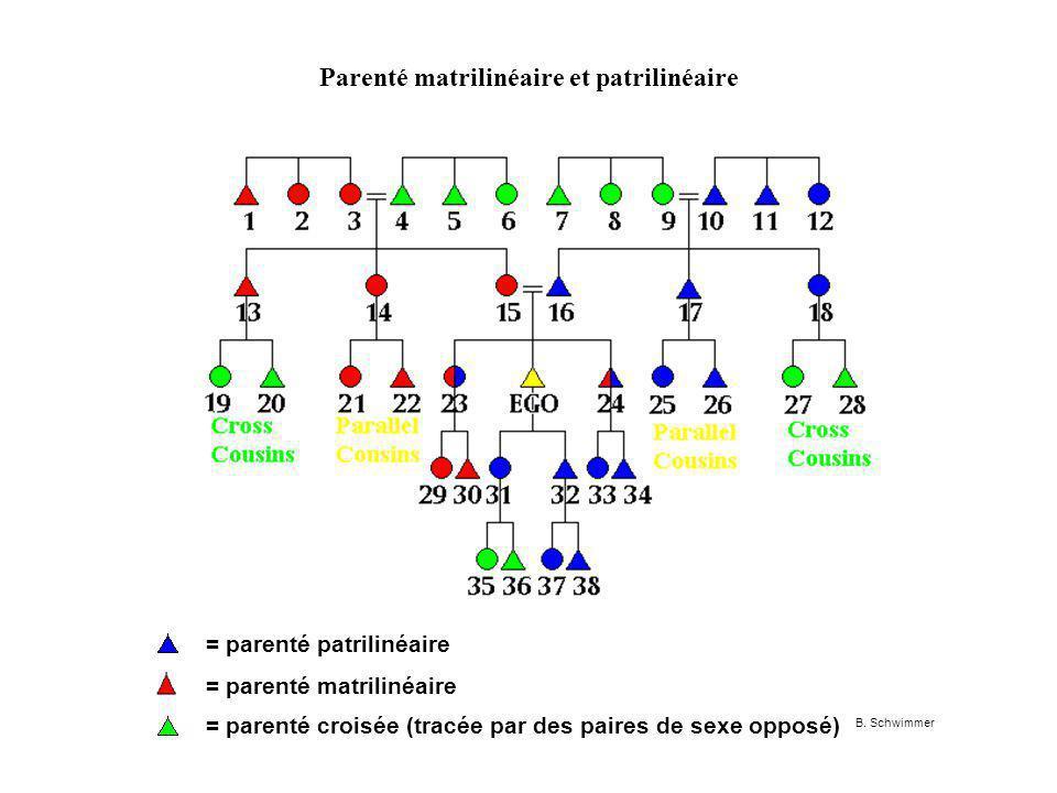 Parenté matrilinéaire et patrilinéaire = parenté patrilinéaire = parenté matrilinéaire = parenté croisée (tracée par des paires de sexe opposé) B.