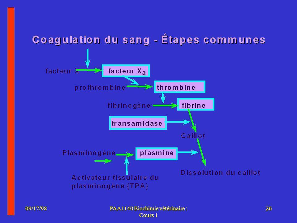 09/17/9826PAA1140 Biochimie vétérinaire : Cours 1