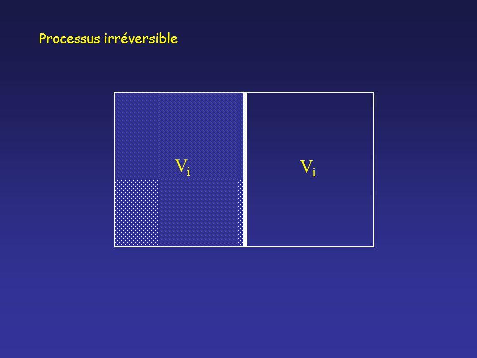 ViVi ViVi Processus irréversible