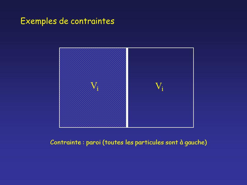 ViVi ViVi Contrainte : paroi (toutes les particules sont à gauche) Exemples de contraintes