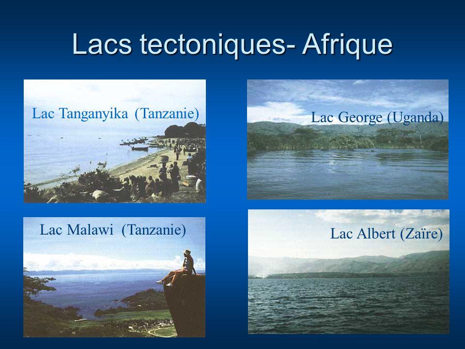 Lacs tectoniques- Afrique Lac Malawi (Tanzanie) Lac Albert (Zaïre) Lac George (Uganda) Lac Tanganyika (Tanzanie)