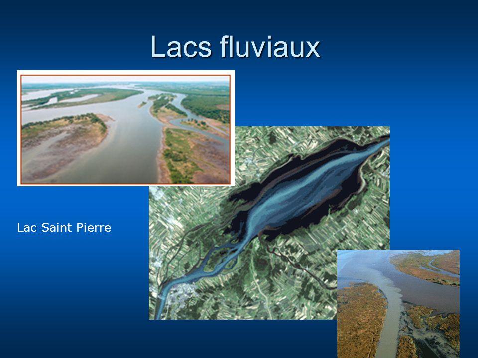 Lacs fluviaux Lac Saint Pierre