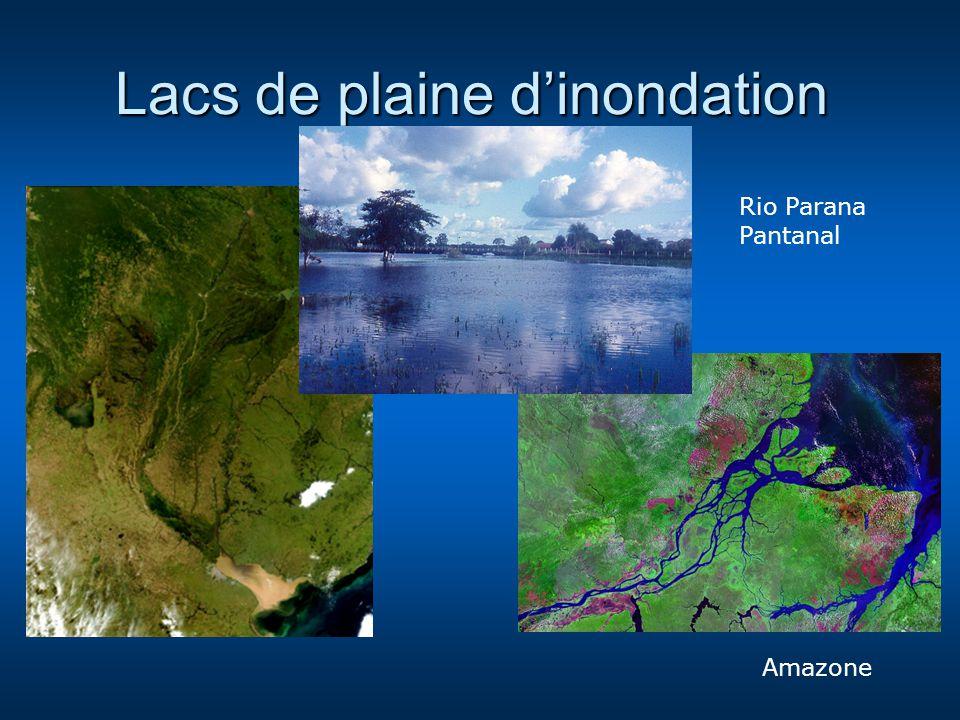 Lacs de plaine dinondation Rio Parana Pantanal Amazone