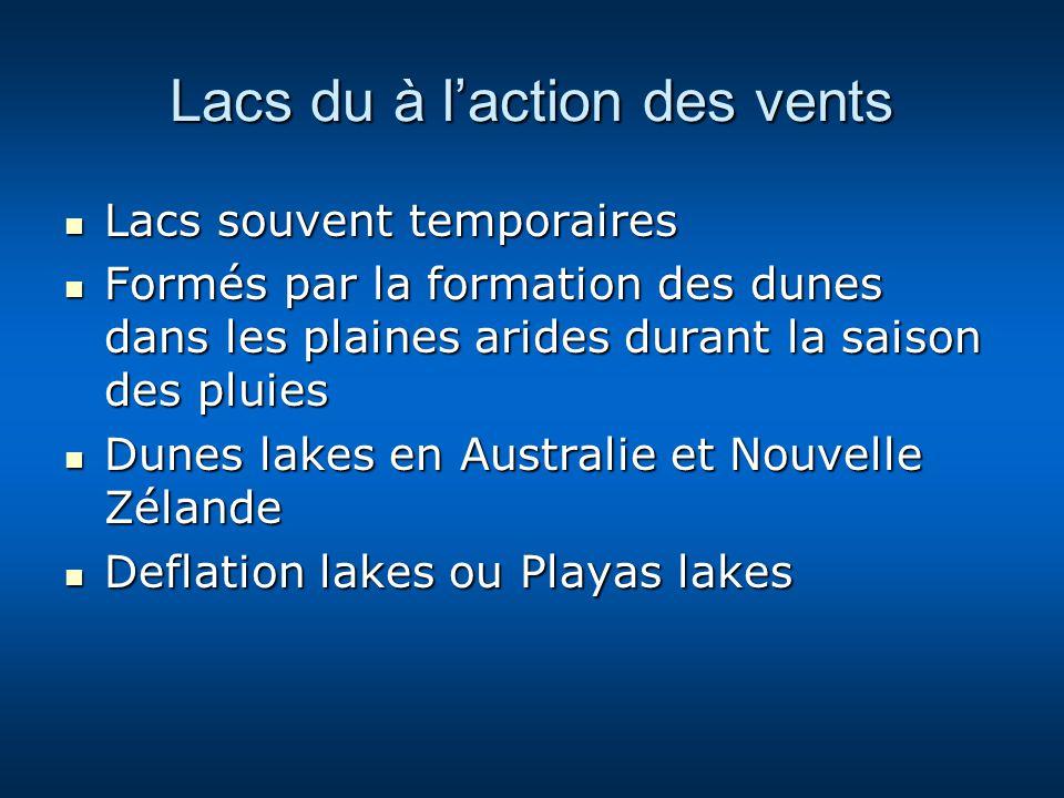 Lacs du à laction des vents Lacs souvent temporaires Lacs souvent temporaires Formés par la formation des dunes dans les plaines arides durant la sais