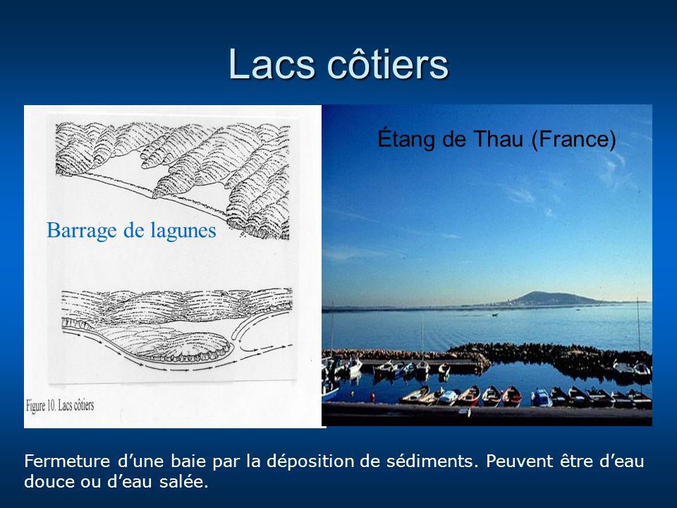 Lacs côtiers Étang de Thau (France) Barrage de lagunes Fermeture dune baie par la déposition de sédiments. Peuvent être deau douce ou deau salée.