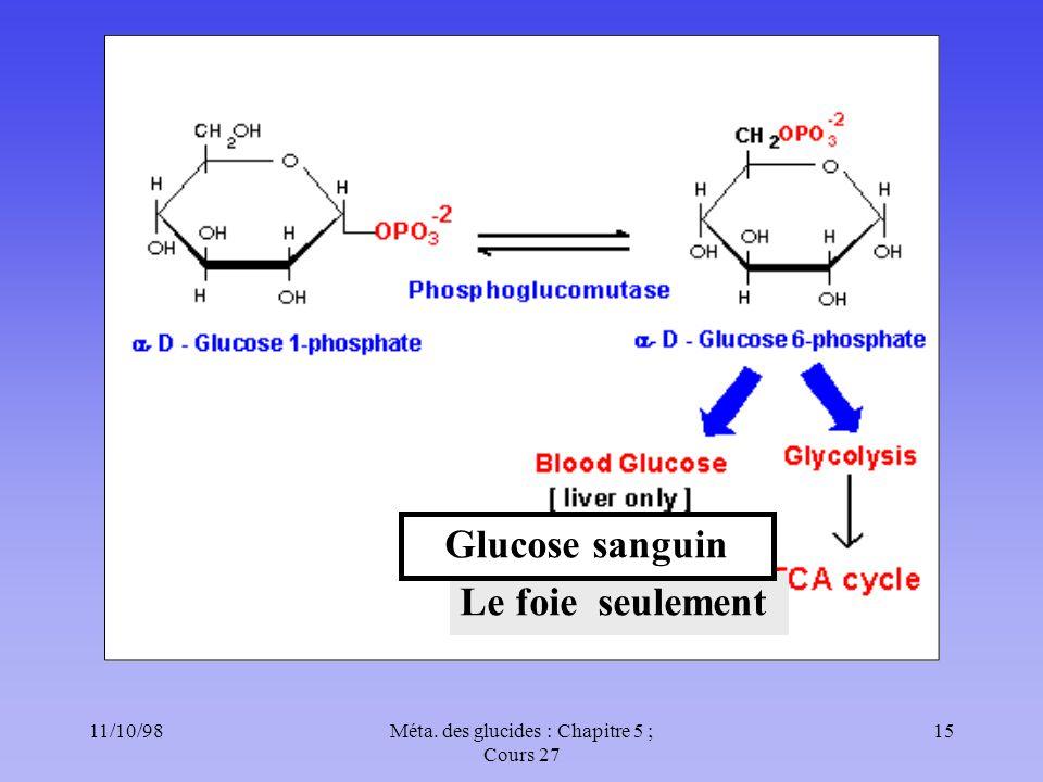 11/10/9815Méta. des glucides : Chapitre 5 ; Cours 27 Le foie seulement Glucose sanguin
