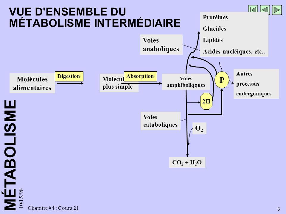 MÉTABOLISME 10/15/98 3 Chapitre #4 : Cours 21 Molécules alimentaires Digestion Molécules plus simple Absorption Voies amphiboliqques CO 2 + H 2 O O2O2