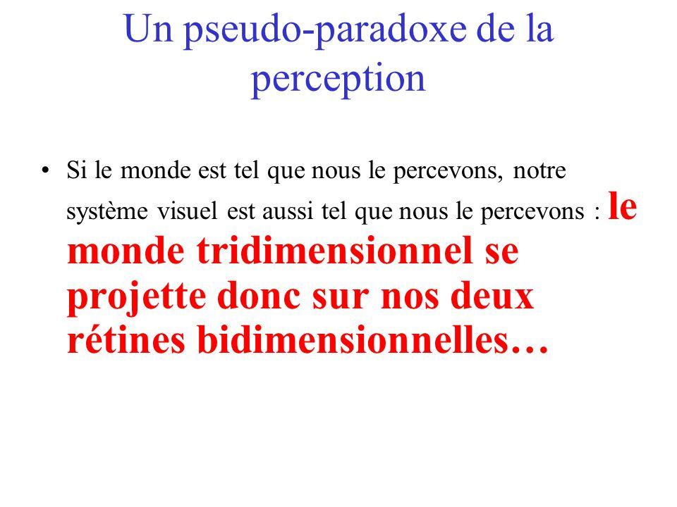 Un pseudo-paradoxe de la perception Si le monde est tel que nous le percevons, notre système visuel est aussi tel que nous le percevons : le monde tri