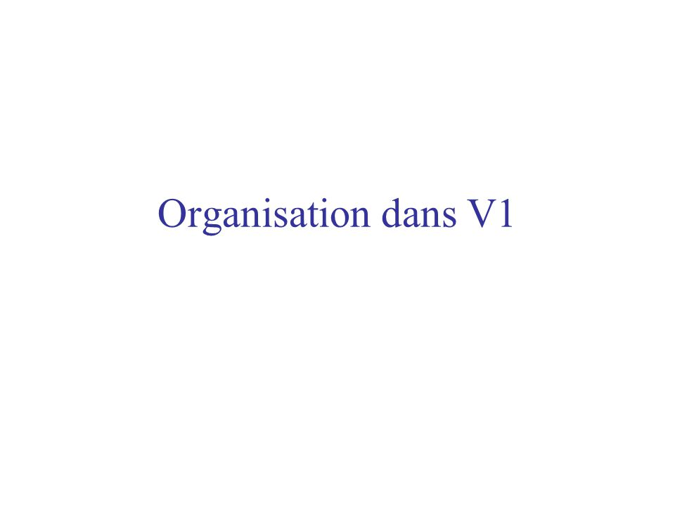 Organisation dans V1