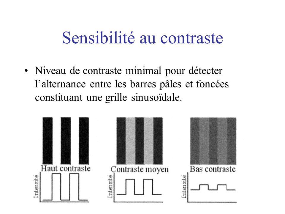 Sensibilité au contraste Niveau de contraste minimal pour détecter lalternance entre les barres pâles et foncées constituant une grille sinusoïdale.