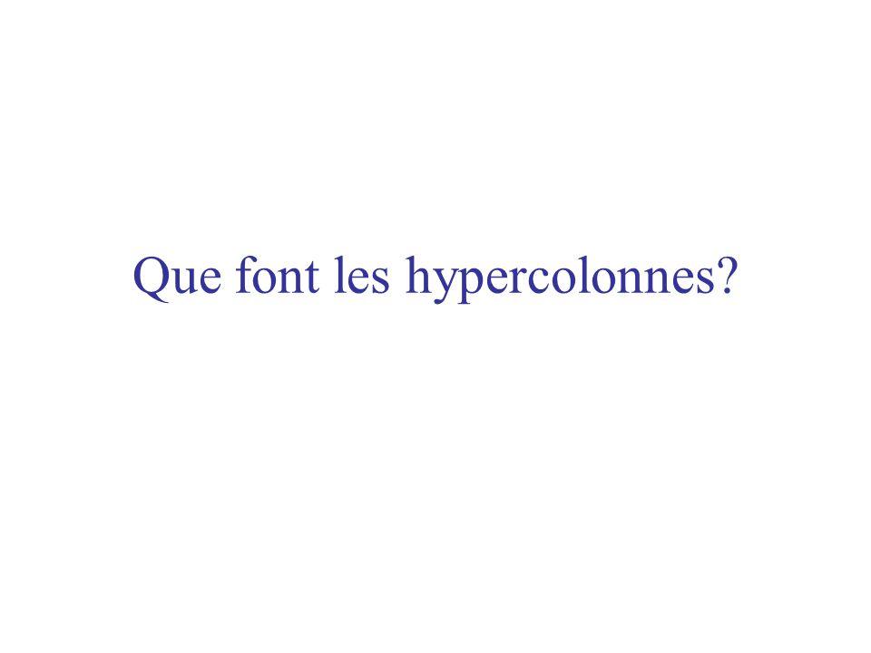 Que font les hypercolonnes?