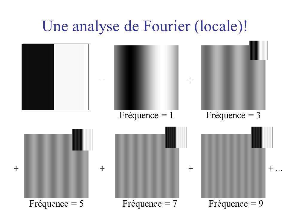 = Fréquence = 1 + Fréquence = 3 + Fréquence = 5 + + … Fréquence = 9 + Fréquence = 7 Une analyse de Fourier (locale)!