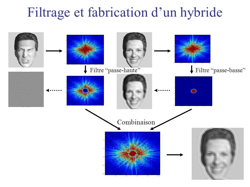 Filtrage et fabrication dun hybride Filtre passe-basse Combinaison Filtre passe-haute