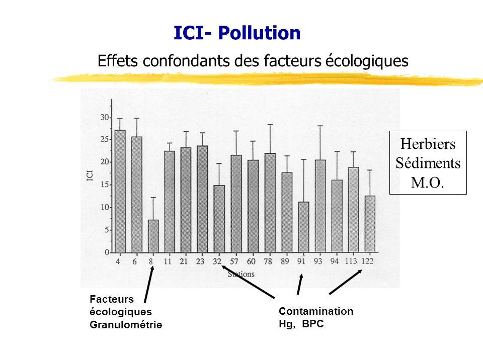 ICI- Pollution Facteurs écologiques Granulométrie Contamination Hg, BPC Effets confondants des facteurs écologiques Herbiers Sédiments M.O.