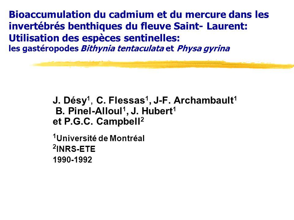 Bioaccumulation du cadmium et du mercure dans les invertébrés benthiques du fleuve Saint- Laurent: Utilisation des espèces sentinelles: les gastéropodes Bithynia tentaculata et Physa gyrina J.