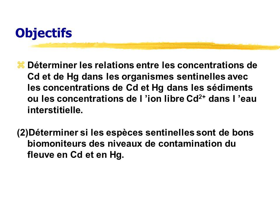Objectifs Déterminer les relations entre les concentrations de Cd et de Hg dans les organismes sentinelles avec les concentrations de Cd et Hg dans le