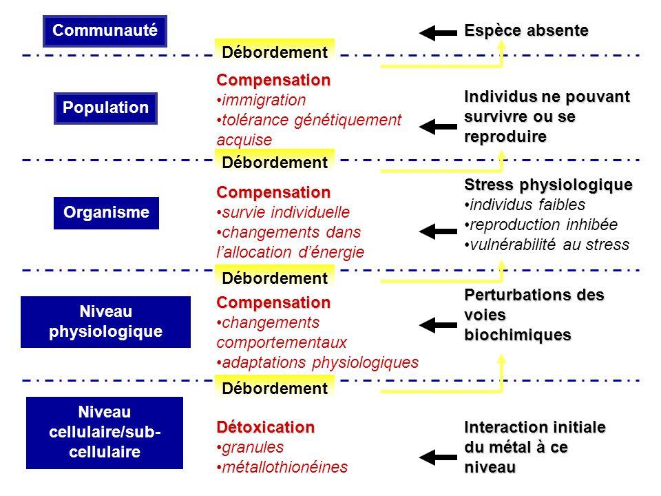 Niveau cellulaire/sub- cellulaire Niveau physiologique Perturbations des voies biochimiques Individus ne pouvant survivre ou se reproduire Espèce abse