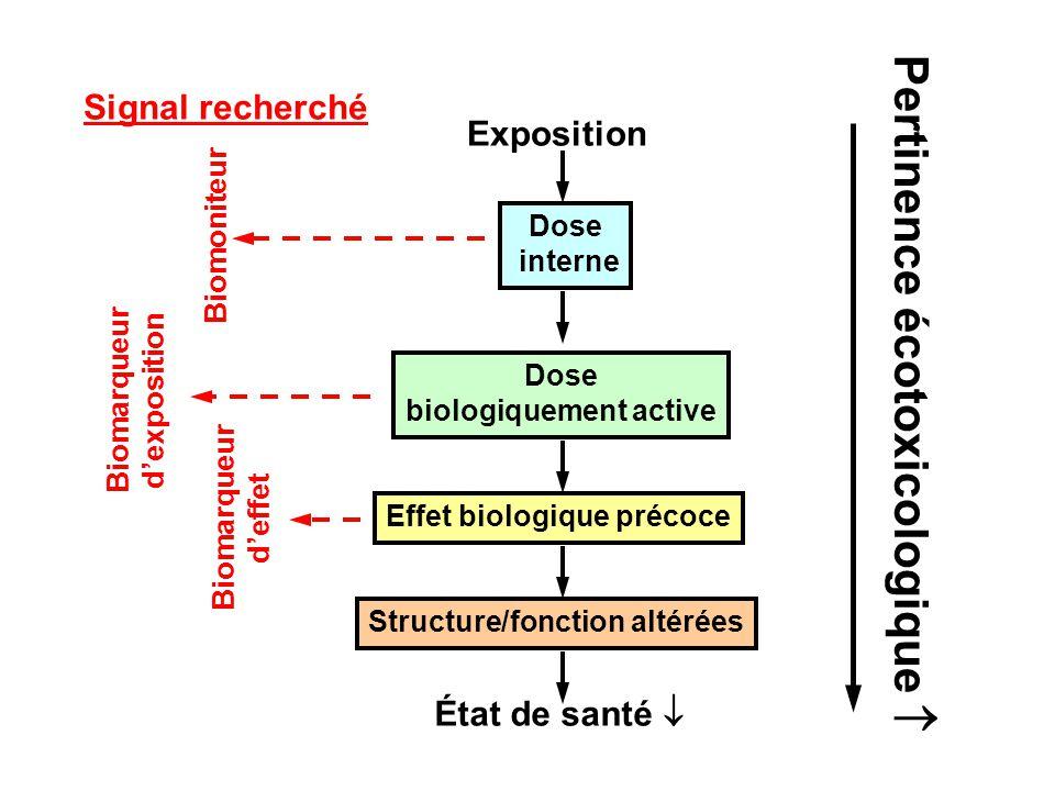 Exposition Dose interne Dose biologiquement active Structure/fonction altérées Effet biologique précoce État de santé Biomoniteur Biomarqueur dexposition Biomarqueur deffet Signal recherché Pertinence écotoxicologique