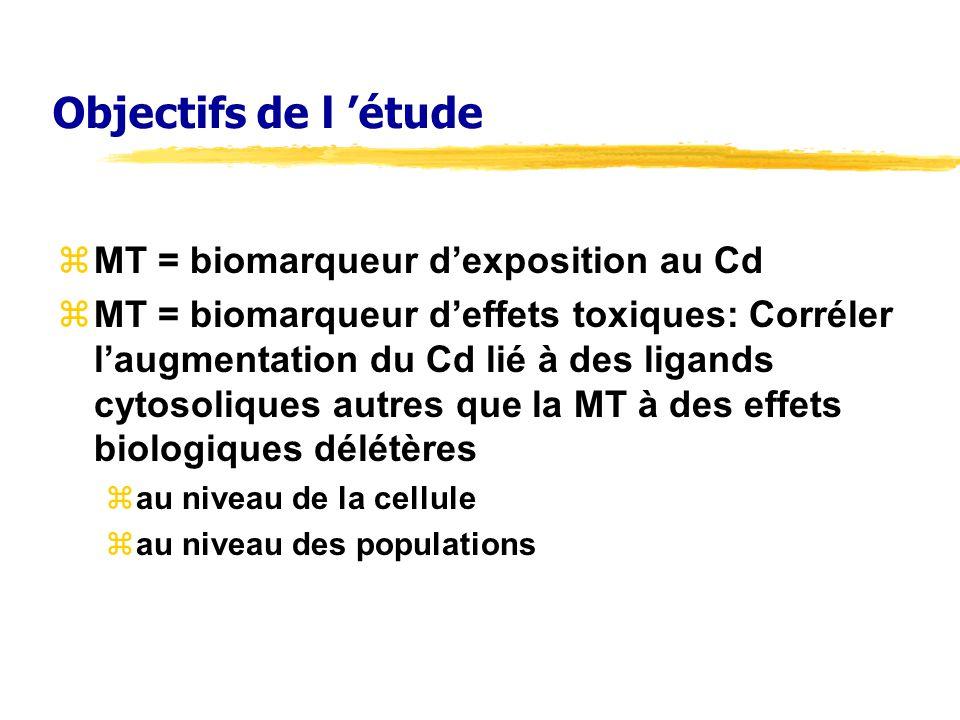 Objectifs de l étude zMT = biomarqueur dexposition au Cd zMT = biomarqueur deffets toxiques: Corréler laugmentation du Cd lié à des ligands cytosoliques autres que la MT à des effets biologiques délétères zau niveau de la cellule zau niveau des populations