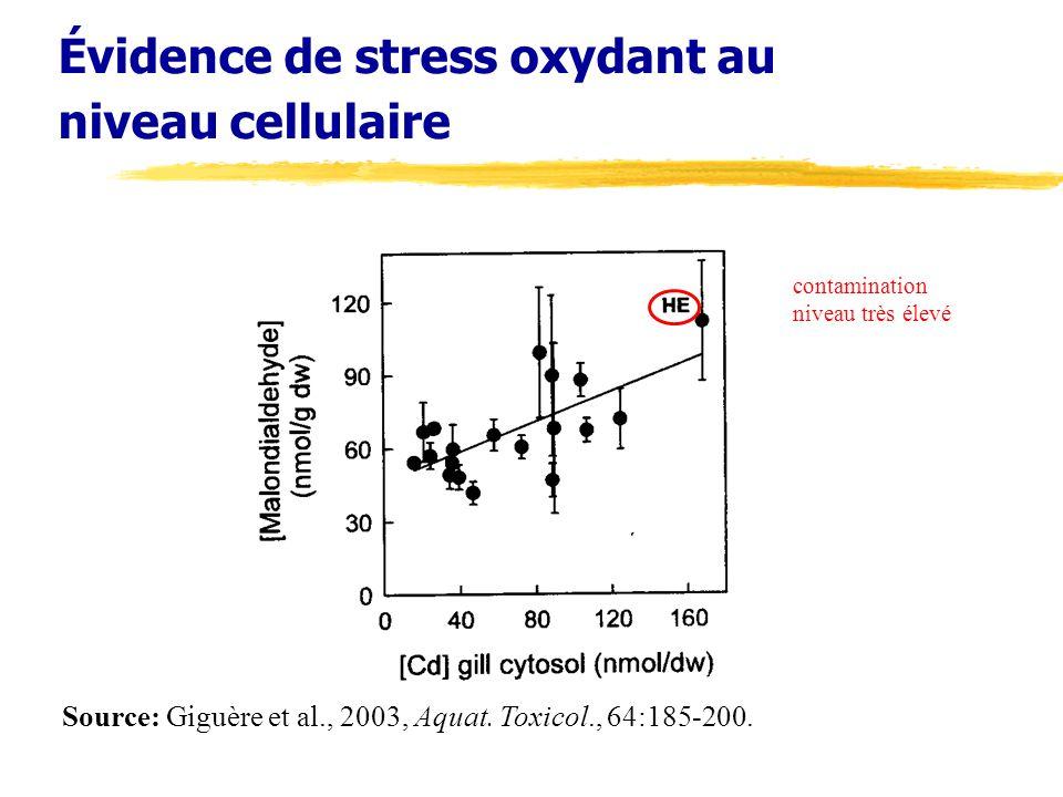 Évidence de stress oxydant au niveau cellulaire Source: Giguère et al., 2003, Aquat. Toxicol., 64:185-200. contamination niveau très élevé