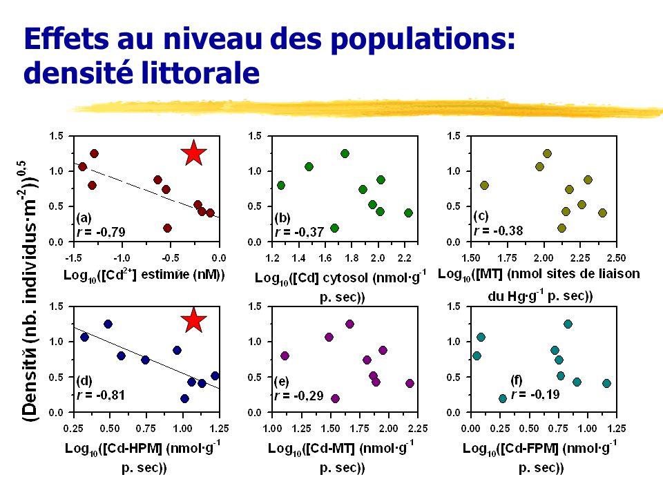 Effets au niveau des populations: densité littorale