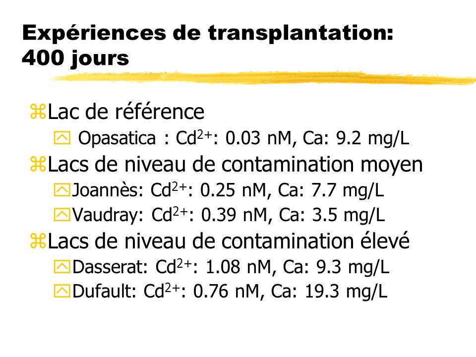 Expériences de transplantation: 400 jours zLac de référence y Opasatica : Cd 2+ : 0.03 nM, Ca: 9.2 mg/L zLacs de niveau de contamination moyen yJoannès: Cd 2+ : 0.25 nM, Ca: 7.7 mg/L yVaudray: Cd 2+ : 0.39 nM, Ca: 3.5 mg/L zLacs de niveau de contamination élevé yDasserat: Cd 2+ : 1.08 nM, Ca: 9.3 mg/L yDufault: Cd 2+ : 0.76 nM, Ca: 19.3 mg/L