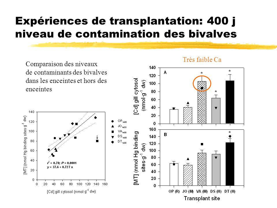 Expériences de transplantation: 400 j niveau de contamination des bivalves Comparaison des niveaux de contaminants des bivalves dans les enceintes et hors des enceintes Très faible Ca