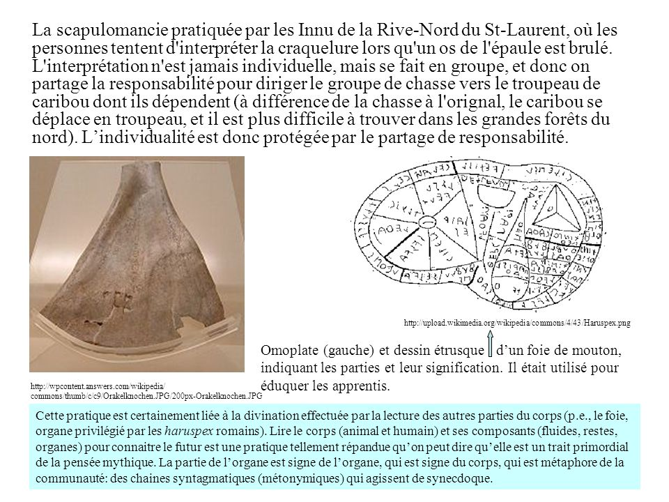 La scapulomancie pratiquée par les Innu de la Rive-Nord du St-Laurent, où les personnes tentent d'interpréter la craquelure lors qu'un os de l'épaule
