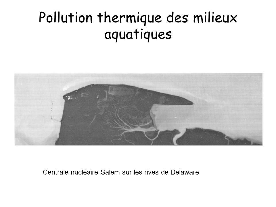 Pollution thermique des milieux aquatiques Centrale nucléaire Salem sur les rives de Delaware
