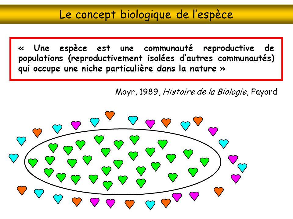 Le concept biologique de lespèce « Une espèce est une communauté reproductive de populations (reproductivement isolées dautres communautés) qui occupe