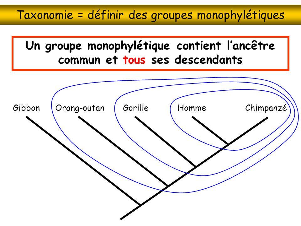 Taxonomie = définir des groupes monophylétiques HommeChimpanzéGorilleOrang-outanGibbon Un groupe monophylétique contient lancêtre commun et tous ses d