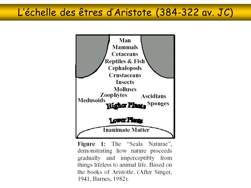Léchelle des êtres dAristote (384-322 av. JC)