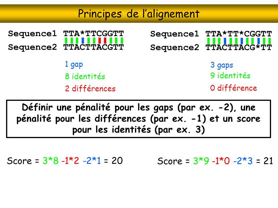 Principes de lalignement Définir une pénalité pour les gaps (par ex. -2), une pénalité pour les différences (par ex. -1) et un score pour les identité