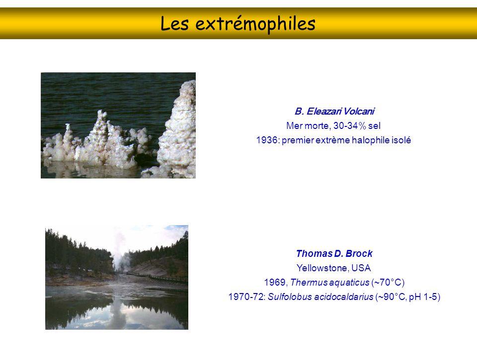 Les extrémophiles Psychrophiles Activité microbienne enregistré Au pôle sud, -12 à -17ºC Pyrolobus fumarii Mid-Atlantic Ridge 113ºC